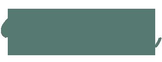 Premium Offer Logo